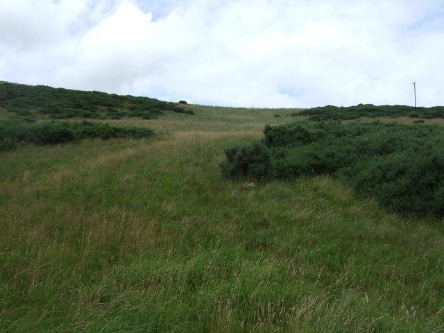 Hillside grazing above the Whiteadder Water