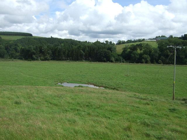 Pond and grazing near Ellemford Bridge
