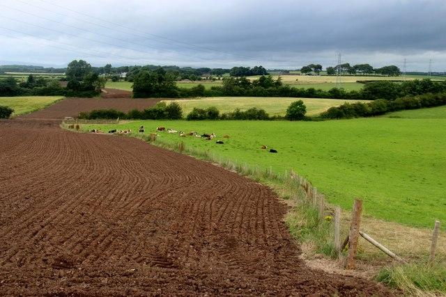 Mixed farming at Drummuir, Dreghorn