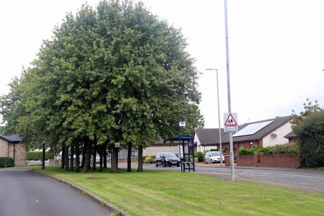 Bus stop on Kilmarnock Road, Springside