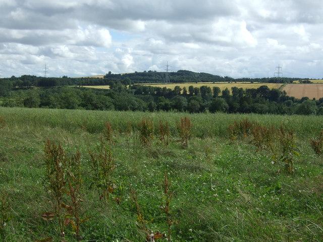 Farmland, Primrosehill
