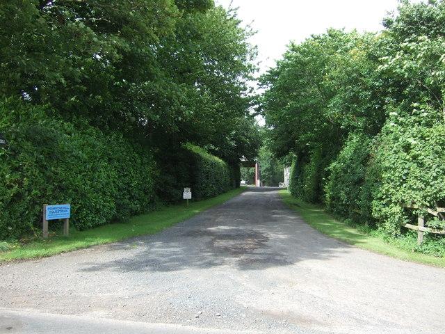 Road to Primrosehill