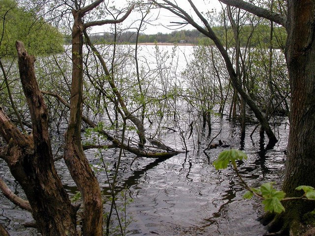 Powdermill Reservoir looking south towards the dam