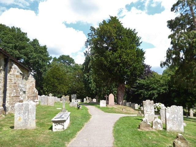 St Bartholomew, Burwash: churchyard (d)