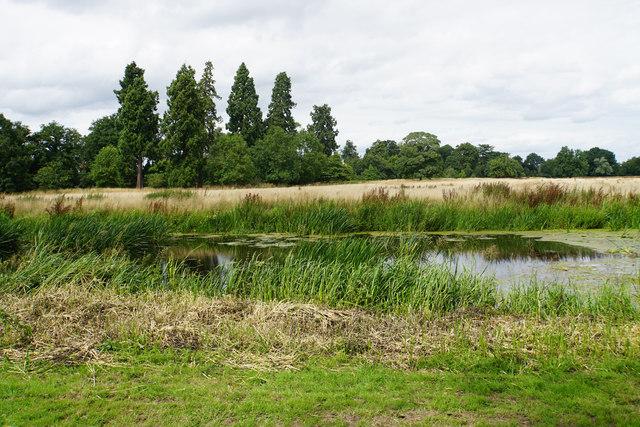 The River Sow at Shugborough