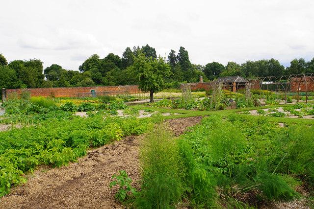 Walled garden at Shugborough