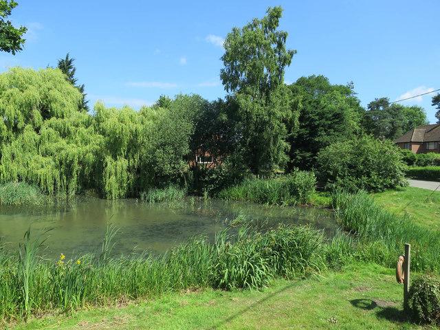 Village pond, Pilson Green