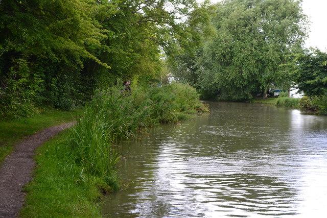 Ashby Canal near Nutt's Bridge