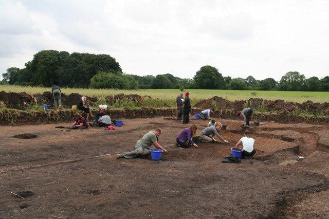 Open day in a Saxon oat field in Little Carlton (2)