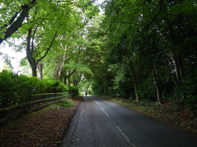 Peckleton Lane near Broadlands Manor