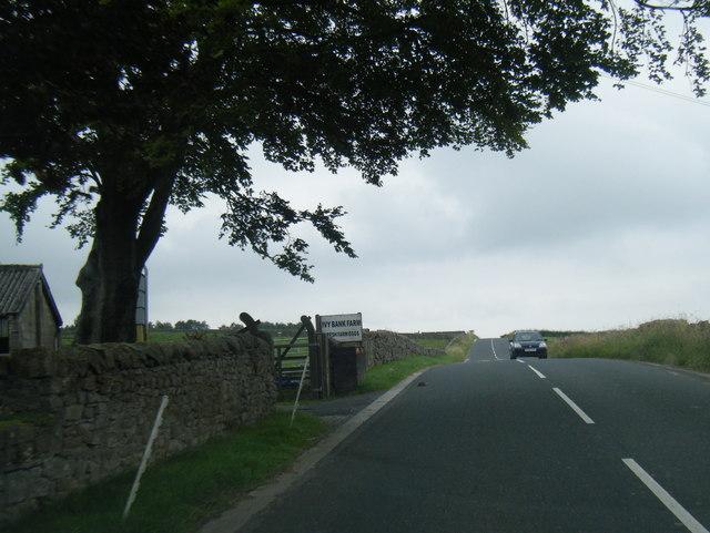 Langthwaite Road at Ivy Bank