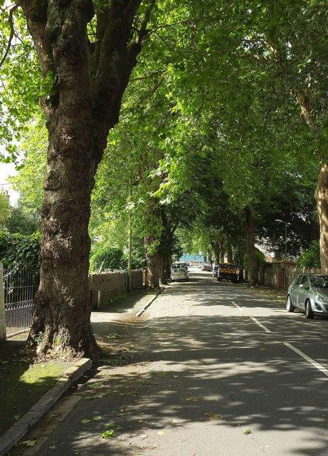 Devons Road, Babbacombe