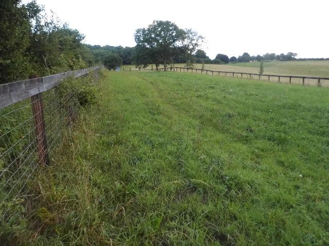 Fields by Baydon Road