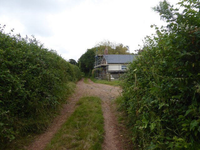 Track to Posbury at Cholwell