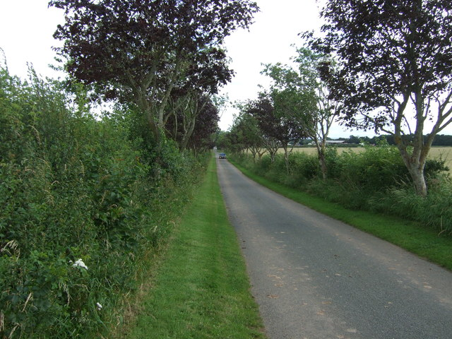 Road to West Blanerne