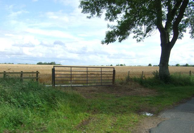 Field entrance near East Blanerne