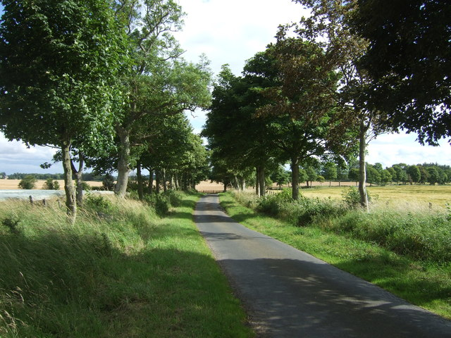 Minor road towards Chirnside