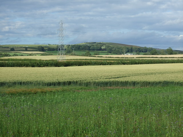 Crop fields and pylon