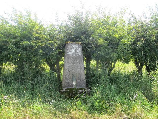 Glovers Hill triangulation pillar