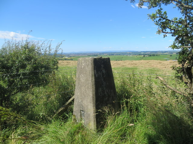 Trig point at Hillhouse