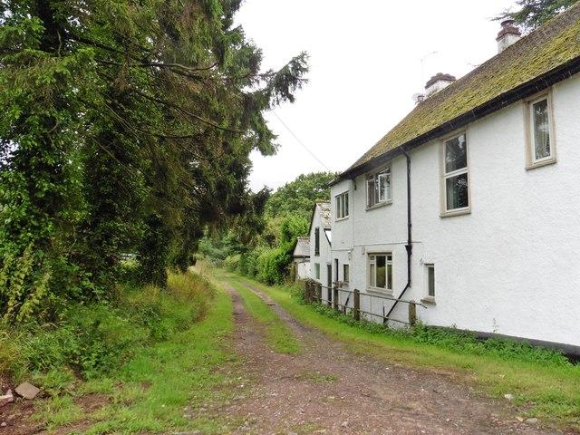 Track to former farm railway crossing, East Barton