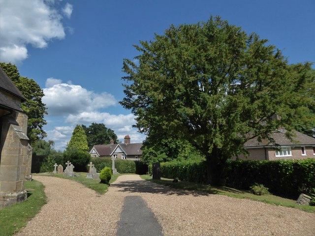St Philip, Burwash Weald: churchyard (d)