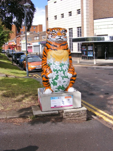 Tiger Lily Bear