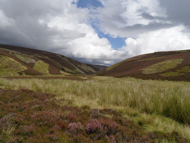 Marsh at source of Quillichan Burn