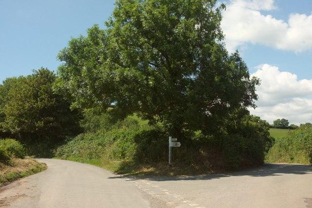 Spanish Lane End