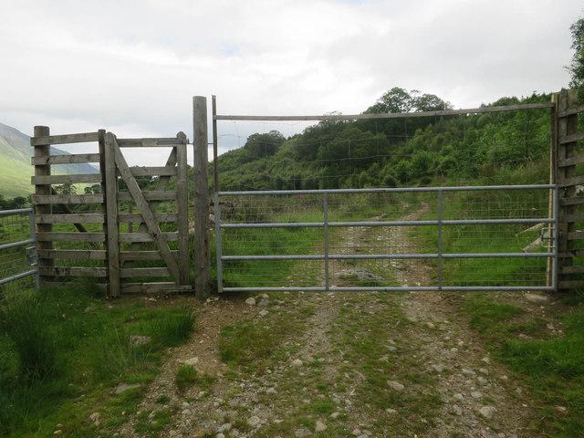 Deer gate across track