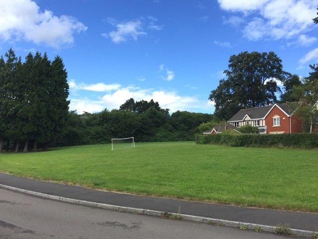 Bassett's Field