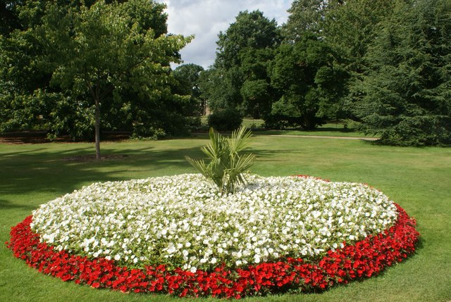 View of a flowerbed in Greenwich Park #6