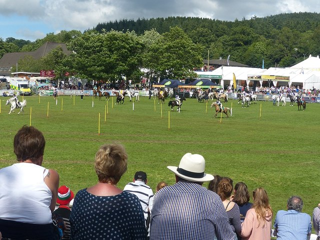 The Cattle Ring, Royal Welsh Show