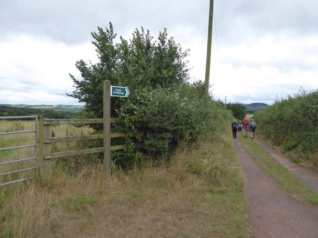Bridleway to Barn Farm