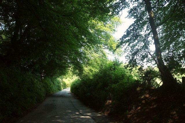 Lane near Boreston