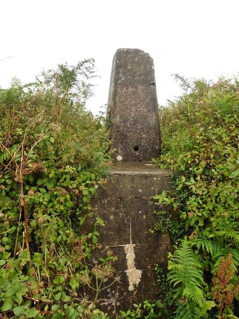 Trig point near Seven Crosses