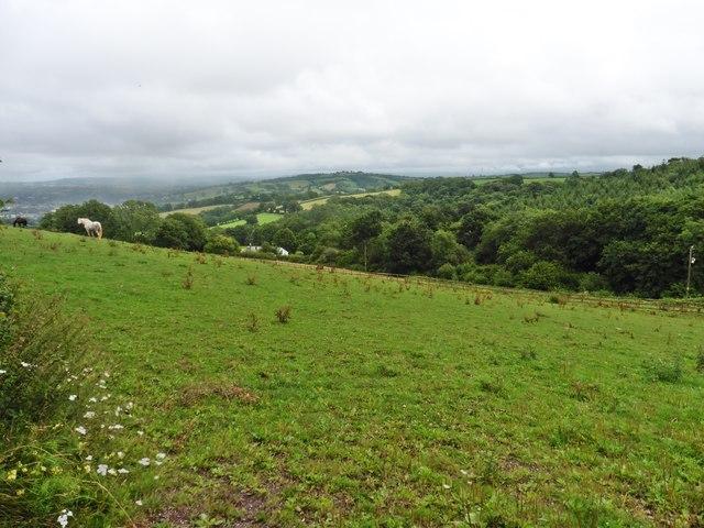 Grazing land at Hensleigh Farm