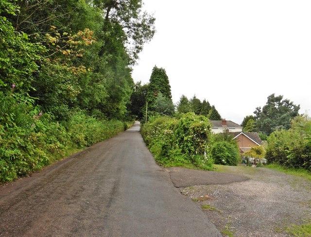 Lane to Calverleigh Cross
