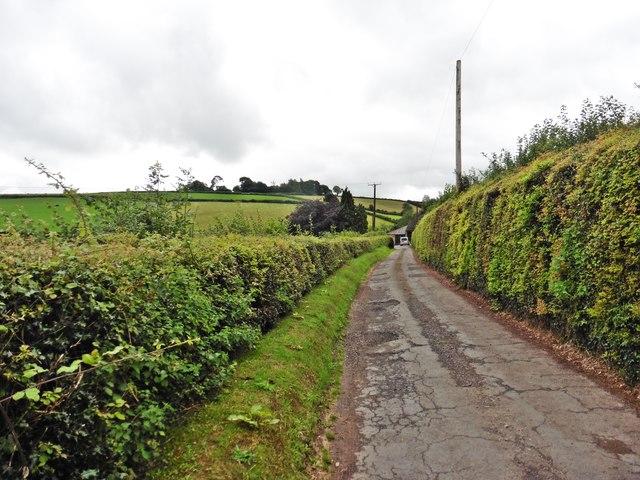 Lane to Higher Farleigh