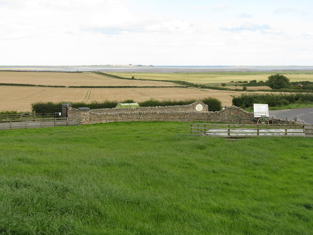 Fields at Beal