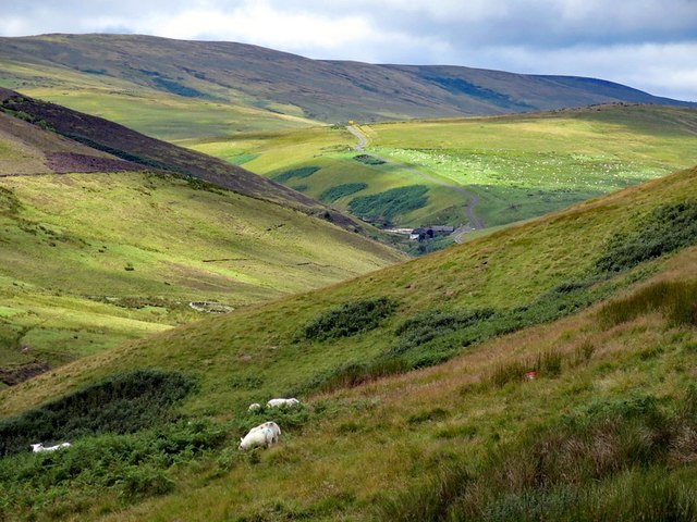Upper Coquetdale from Eald Rigg