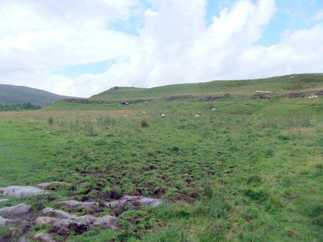 Grazing land above Todd's Wood
