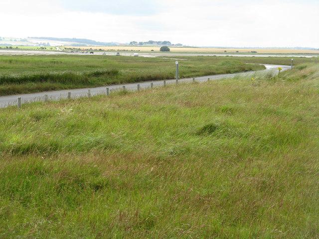 Coastal grassland at Lindisfarne