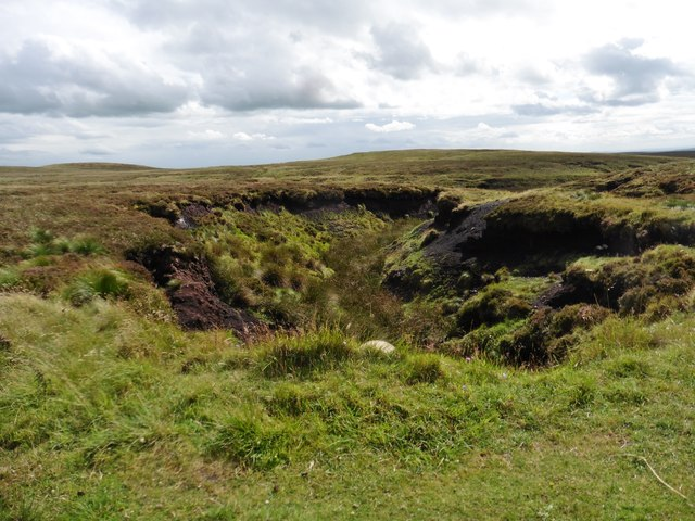 Peat hags, near Dane Head