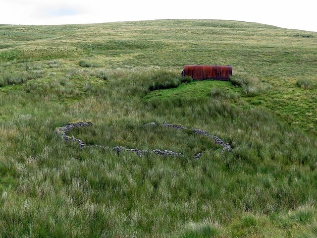 Sheepfold above Buckham's Walls Burn