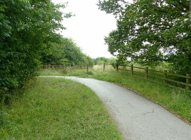 Nutbrook trail near Shipley Common
