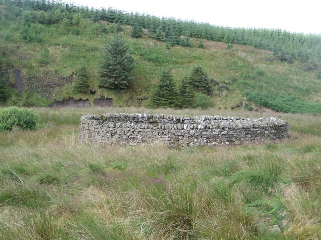 Sheepfold close to the Chirdon Burn