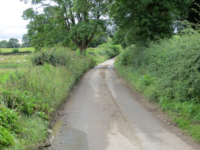 Roomer Lane at Den Beck Bridge