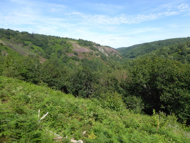 The gorge of the Teign from Hunter's Tor