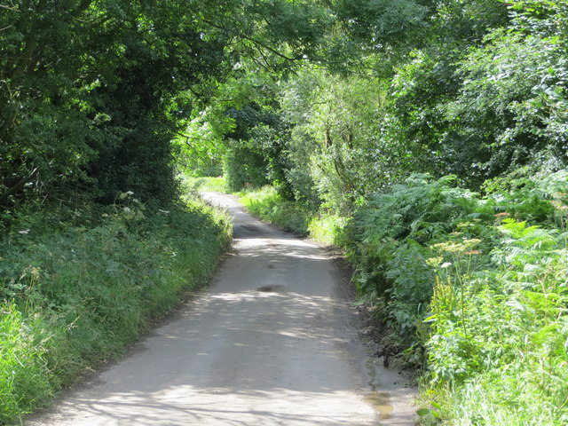 Lane from Swinton to Ilton near to Brock Ridding